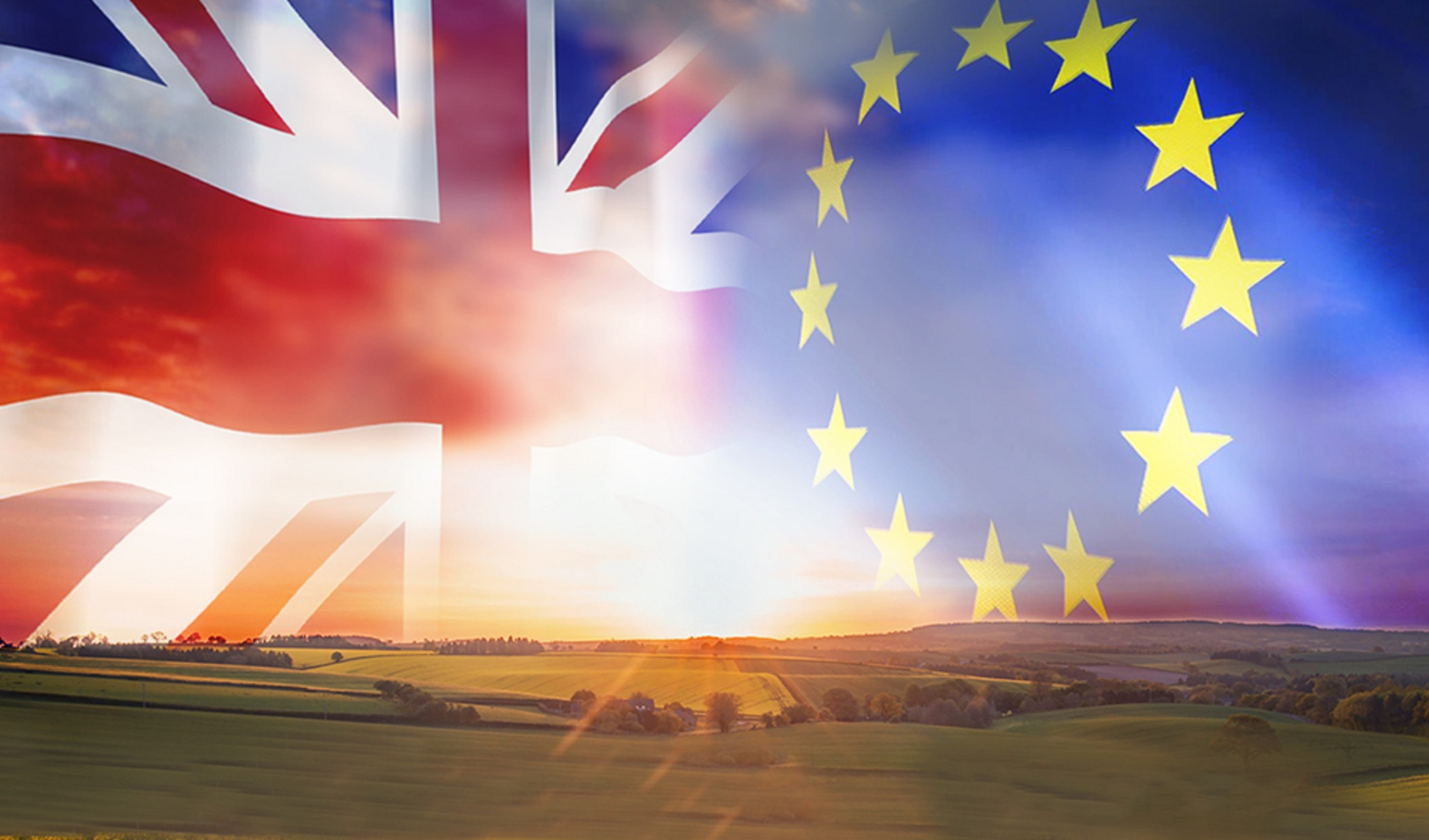 Brexit impact - Stronger in Europe - seed sector